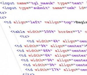 Bekerja di Bagian Administrasi apa masih bisa koding?